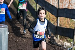 """2018_Nationale_veldloop_Rias.Photography39 • <a style=""""font-size:0.8em;"""" href=""""http://www.flickr.com/photos/164301253@N02/44139425744/"""" target=""""_blank"""">View on Flickr</a>"""