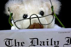 "REMEDY FOR FARSIGHTEDNESS || REMEDIE TEGEN VERZIENDHEID (Anne-Miek Bibbe) Tags: macromondays ""remedy"" remedie remedy heilmittel remède bril leesbril goggles readingglasses brillen lesebrille lunettesdelecture lunettes occhiali letturaocchiali canoneos700d canoneosrebelt5idslr annemiekbibbe bibbe nederland 2018 bear teddybear beertje teddybeer beer speelgoedbeer nounours minibeer minibear"