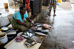 Woman preparing fishes (licourclara) Tags: woman fish market negombo srilanka locals working travel roadtrip nikon d5300