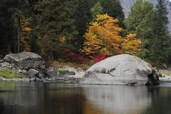 Fall Foliage, Wenatchee River (jlcummins - Washington State) Tags: chelancounty washingtonstate tumwatercanyon autumn fall fallcolors nature wenatcheeriver river