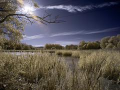 Helix Park infrared (MikeHawkwind) Tags: falkirk helix infrared irphoto irphotography landscape scotland uk water