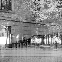 A Double with a Sparrow or two (ucn) Tags: rolleiflex35b mutar15x fomaretropan320soft doppelbelichtung doubleexposure filmdev:recipe=11970 adoxadxab developer:brand=adox developer:name=adoxadxab