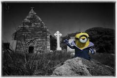Minion in Irland, Dingle Peninsula (FV1405) Tags: 2018 dinglepeninsula irland minion countykerry ie vampier horror