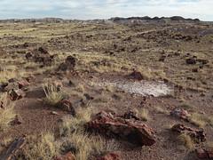Long Logs Trail (Zruda) Tags: arizona geo:lat=3480906788 geo:lon=10985777003 geotagged headquarters holbrook unitedstates usa