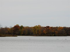 Fall Colors at the Park (Anton Shomali - Thank you for over 3 million views) Tags: gray sky clouds cold cool season lake water trees fallcolors nature fall colors park fallcolorsatthepark
