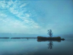 Foggy island in the mirrow. (mikhafff1984) Tags: foggy island mirrors mirror autumn landscape russia pond lake nature naturelover