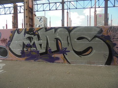 moans vive (en-ri) Tags: moans rosa argento nero viola tuba torino wall muro graffiti writing parco dora