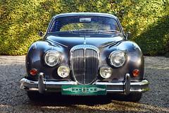 Daimler 2 1/2 Litre V8 (1964)