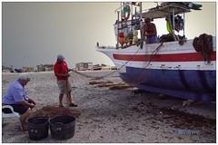 Oficio: el mar (mariadoloresacero) Tags: sea mer mar plage beach playa ship bâteau barco pescatori pêcheurs fishermen pescadores