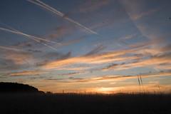 _DSC9513.jpg (thomasresch) Tags: sonneaufgang sun nordhaide panzerwiese nebel hartelholz sunrise sonne
