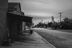 Saturday Evening in Giddings, Texas (lonestarbackroads) Tags: texas giddingstx giddingstexas courthouse texascourthouse blackandwhite
