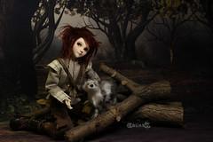 Woodie I (BblinkK) Tags: mirodoll daisy 14 msd custom bjd doll