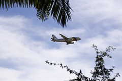 Fotos produzidas pelo Senado (Senado Federal) Tags: bie avião pouso voo aeroporto céu forçaaéreabrasileira fab brasília df brasil bra