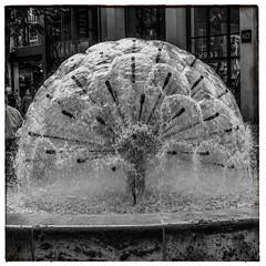Water Ball (Francis =Photography=) Tags: europa europe allemagne germany deutschland badewurtemberg badenwã¼rttemberg paysdebade architecture bundesrepublikdeutschland stuttgart fontaine eau water brunnen fountain wasser wasserball waterball badenwürttemberg