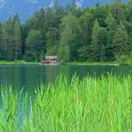 Bayern - Mittenwald: Lautersee - a lake at an elevation of 1013 m thumbnail
