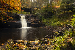 Autumn at Hamsterley Forest (RichySum77) Tags: forest woods durham england uk canon eos 80d river stream autumn leaves rocks water falls waterfall reflection hamsterley stones pebbles woodland landscape nature foliage trees