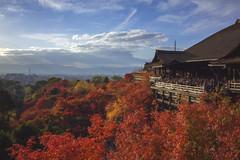 Kiyomizudera (arbivi) Tags: autumn fall foliage koyo momiji japanese maple tree red orange kiyomizudera temple kyoto japan canon 60d tamron arbivi raymondviloria