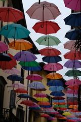 Umbrellas on parade in the sky (willatravel) Tags: pisogne lakeiseo umbrellas