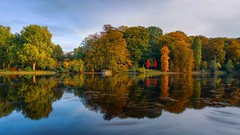 Autumn Rombergpark (Christian Passi - Steher82) Tags: rombergpark herbst autumn fall wasser water germany tree trees bäume color spiegelung teich pond green photography photo sonya6000 a6000 sel1650 flickr landschaft landscape nature natur sky himmel