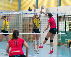 181014_VBTD1-Visp_198 (HESCphoto) Tags: vbtherwil volleyball damen saison1819 99ersporthalle nlb vbcvisp therwil