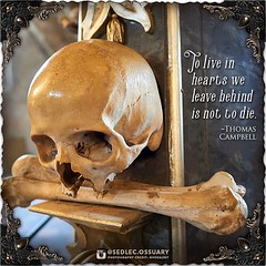 """""""To live in hearts we leave behind is not to die."""" -Thomas Campbell . 💀Turn on post notifications, click link in BIO to follow along on our journey, and sign up on our mailing list at: ☩ sedlecossuary.mechanicalwhispers.com ☩ . 🌟 Lots more exc (Sedlec Ossuary Project) Tags: sedlecossuaryproject sedlec ossuary project sedlecossuary kostnice kutnahora kutna hora prague czechrepublic czech republic czechia churchofbones church bones skeleton skulls humanbones human mementomori memento mori creepy travel macabre death dark historical architecture historicpreservation historic preservation landmark explore unusual mechanicalwhispers mechanical whispers instagram ifttt"""