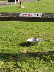Leave Your Dog Here! (Glass Horse 2017) Tags: nyorks danby themoorsnationalparkcentre notice sign dograil signsunday dogbowl quoits rope throw game shadows