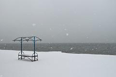 07953707 (aniaerm) Tags: snow ice frost