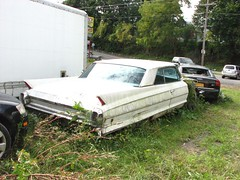 A SAD 1962 CADILLAC DEVILLE (richie 59) Tags: ulstercountyny ulstercounty newyorkstate newyork unitedstates sunday weekend autumn trees automobiles autos motorvehicles vehicles generalmotors townofesopusny townofesopus cars richie59 america outside cadillac grass fall cadillaccoupedeville coupedeville gm gmcar 2018 oct142018 oct2018 1962cadillaccoupedeville 1962coupedeville 1962cadillac 2010s 1960scar 2door twodoor 2doorhardtop twodoorhardtop hardtop whitecar sideview oldcar antiquecar ny nys nystate usa us backend taillights