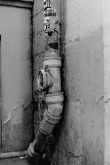 Sourire en coin (laetitia.delbreil) Tags: film filmphotography ishootfilm westillcare filmisawesome filmisback filmisnotdead bn nb bw monochrome monocromo blackandwhite noiretblanc biancoenero blancoynegro analogico análogo analogue argentique pentacon prakticab200 prakticar50mm118 ilfordfp4 iso125 street paris france 18earrondissement slr singlelensreflex reflex fixedfocallength vintagecamera 35mm analogsoul jesuisargentique believeinfilm gouttière grondaia gutter sourireencoin streetart