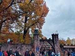entrance gates (SetsuntaMew) Tags: renfaire faire parenfaire autumn fall fallleaves festival