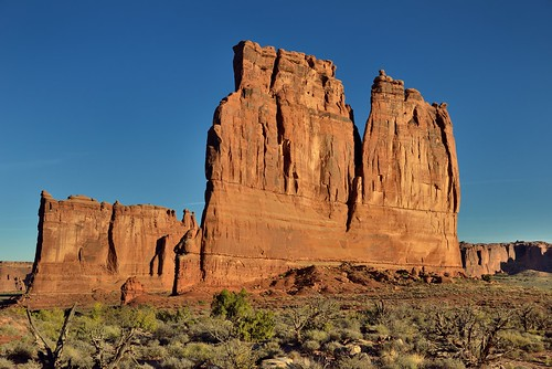 The Organ and Tower of Babel Caught in the Golden Light of the Morning Sun (Arches National Park)