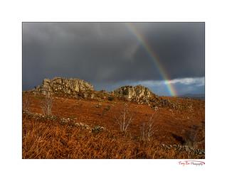 Dartmoor Rainbow_1885