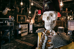 Our Tour Guide Doesn't Say Much (pmkelly) Tags: 31daysofhalloween dysfunctionalgrace dysfunctionalgraceartcompany fez florida halloween hat shriners skeleton skull tampa ybor city