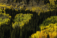 Colorado_fall_slope_2