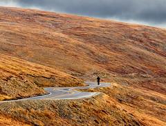 walking above the tree line (marianna_armata) Tags: walk person man road tundra mariannaarmata autumn colorado usa rocky mountain national park