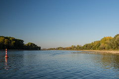 20181015-K32E7528 (AldAsAck1957) Tags: rhine karlsruhe germany low water sunset fall colour
