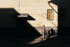 (Rait_Tuulas) Tags: kalamaja tallinn eesti estonia urban street autumn fall shadow tänava
