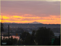 New Westminster Station Sunrise BC18j07 LG (CanadaGood) Tags: canada bc britishcolumbia newwestminster tree sunrise mountain mountbaker river fraserriver canadagood 2018 thisdecade color colour cameraphone morning