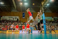 _FPV3537 (américodias) Tags: viana365 benfica sporting voleibol fpv