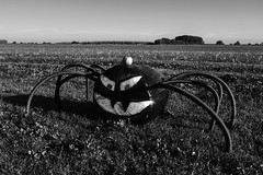 Big Spider (justingreen19) Tags: bigspider england farmersfield fuji fujifilm suffolk trickortreat usco x100f character comical countryside evil evilface face festival fun halloween justingreen19 mono pipes pumpkin scary season spider spooky
