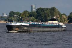 TMS Tyro - ENI 2332780 (5B-DUS) Tags: tms tyro eni 2332780 schiff binnenschiff rhein ship barge vessel