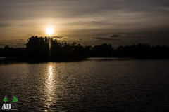 2018-11-02-085.jpg (Andy Beattie Photography) Tags: andybeattie andybeattiephotography castleford england europe halifax landscape landscapephotography leeds nature naturephotography naturereserve photographer photography rspb slta77v sony sonya77 sonyalpha staidans sunset uk westyorkshire yorkshire allertonbywater unitedkingdom
