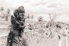 "Balinese (Herve ""Setaou"" BRY) Tags: art tamansoekasadaujung noiretblanc statue bali indonésie bw black blackandwhite blanc indonesia nb noir white"