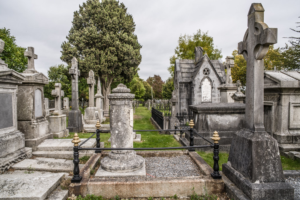 SEPTEMBER 2018 VISIT TO GLASNEVIN CEMETERY [ I USED A BATIS 25mm LENS AND I EXPERIMENTED WITH CAPTURE ONE]-144858