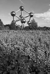 Bollekes (cmjart) Tags: bruxelles brussel brussels belgiumbelgiebelgique europe