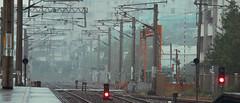 1013_014 (solarliu) Tags: taiwan fog rainy rain trip journey damp blue train bus station snap people passerby