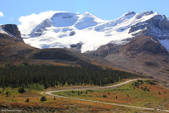Mount Athabasca, Columbia Icefield, Icefields Parkway, Alberta,Canada (Black Diamond Images) Tags: athabascaglacier columbiaicefield jaspernationalpark glacier icefieldsparkway alberta canada scenictours scenic 2012 mountains mountain ice banfftojasper landscape sky snow mountainside mountathabasca travelalberta albertatravel albertaholiday holidayalberta