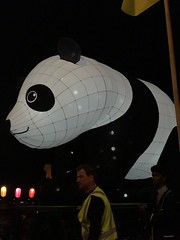 moon lantern festival 2018-18 (bill doyle [mobile]) Tags: moonlanternfestival color iphone7plus 2018 colorful elderpark billdoyle adelaidefestival ozasia lights communityevent southaustralia southaustralian community ozasiafestival sa lanternparade moonlantern adelaide colourful colour lantern iphone7 parade