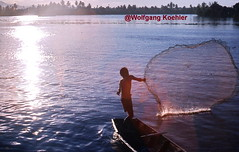 # 291. Fisherman, Java, Indonesia (elbigote1946) Tags: throwing net fishes java catching indonesia sunset dusk fischer