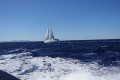 DSC02644 (jos.beekman) Tags: roburbusinessclub kroatie hvar bootreis segorent 480pk split totos